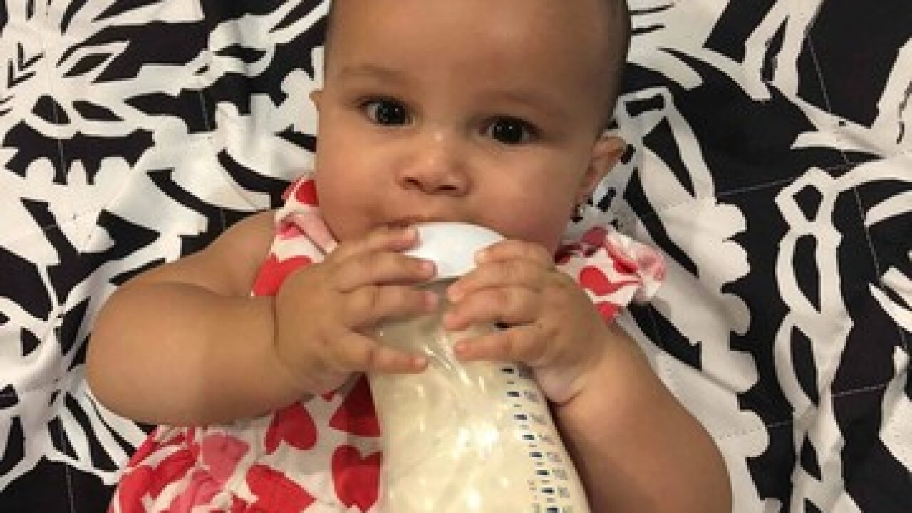 7-month-old dies after dog bite in Clearwater