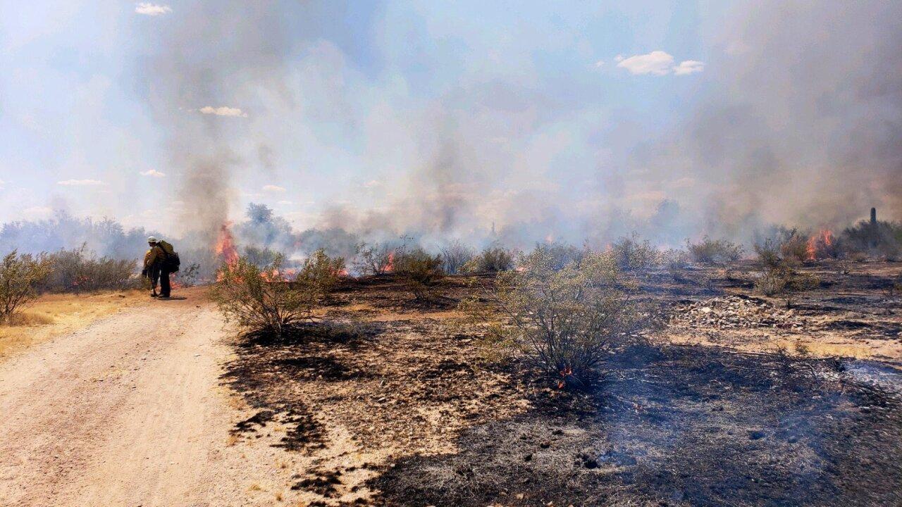 KNXV White Wing Fire near Wittmann