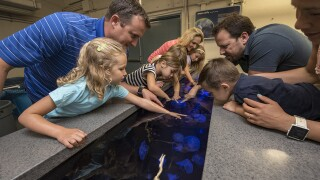 Kids Free deals available at San Diego attractions in October
