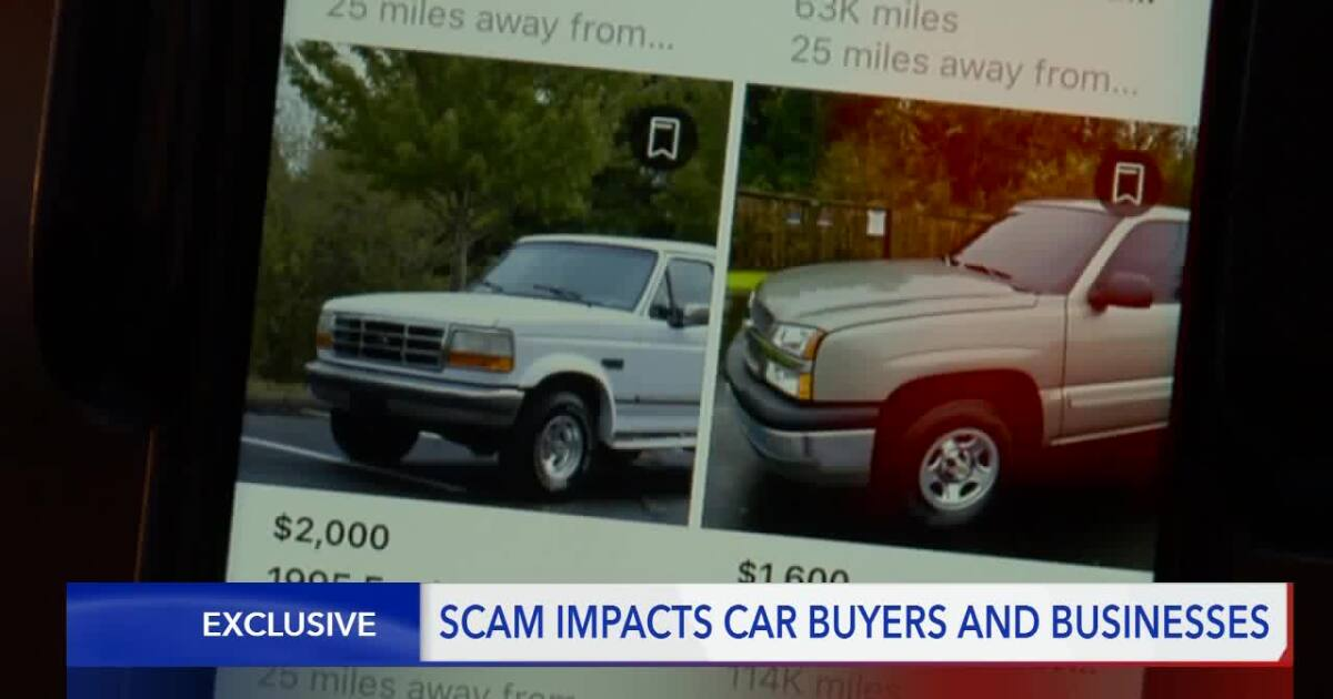 Vehicle Scams Luring Hopeful Buyers From Far And Wide To Roy