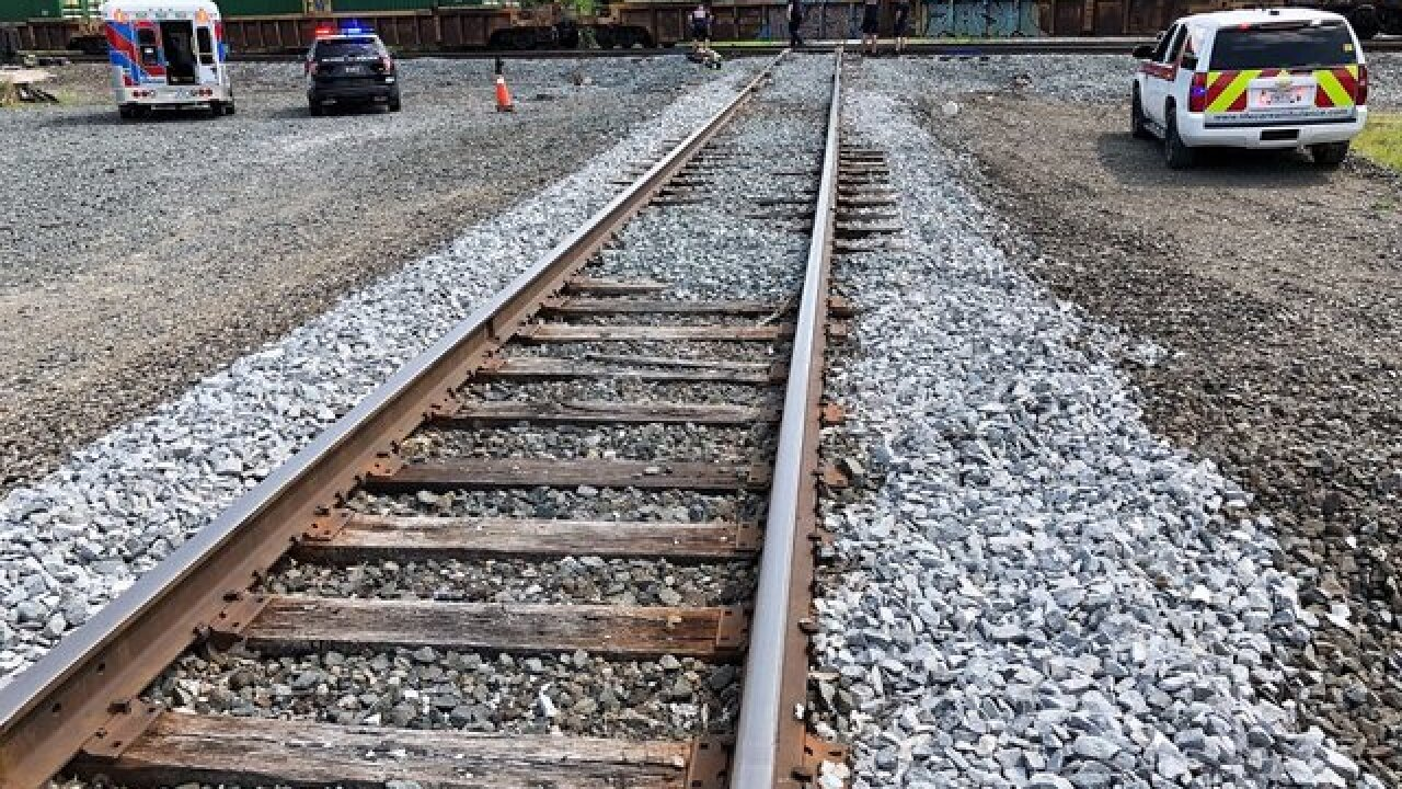 Elyria police investigating fatal accident between pedestrian and train