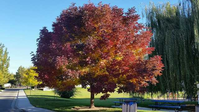 PHOTOS: Fall Colors 2017