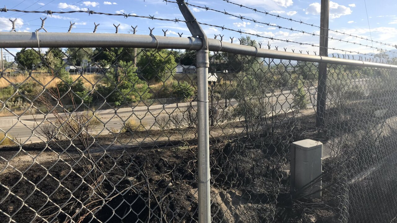 Firefighters say Murray grass fires are suspicious, likely arson