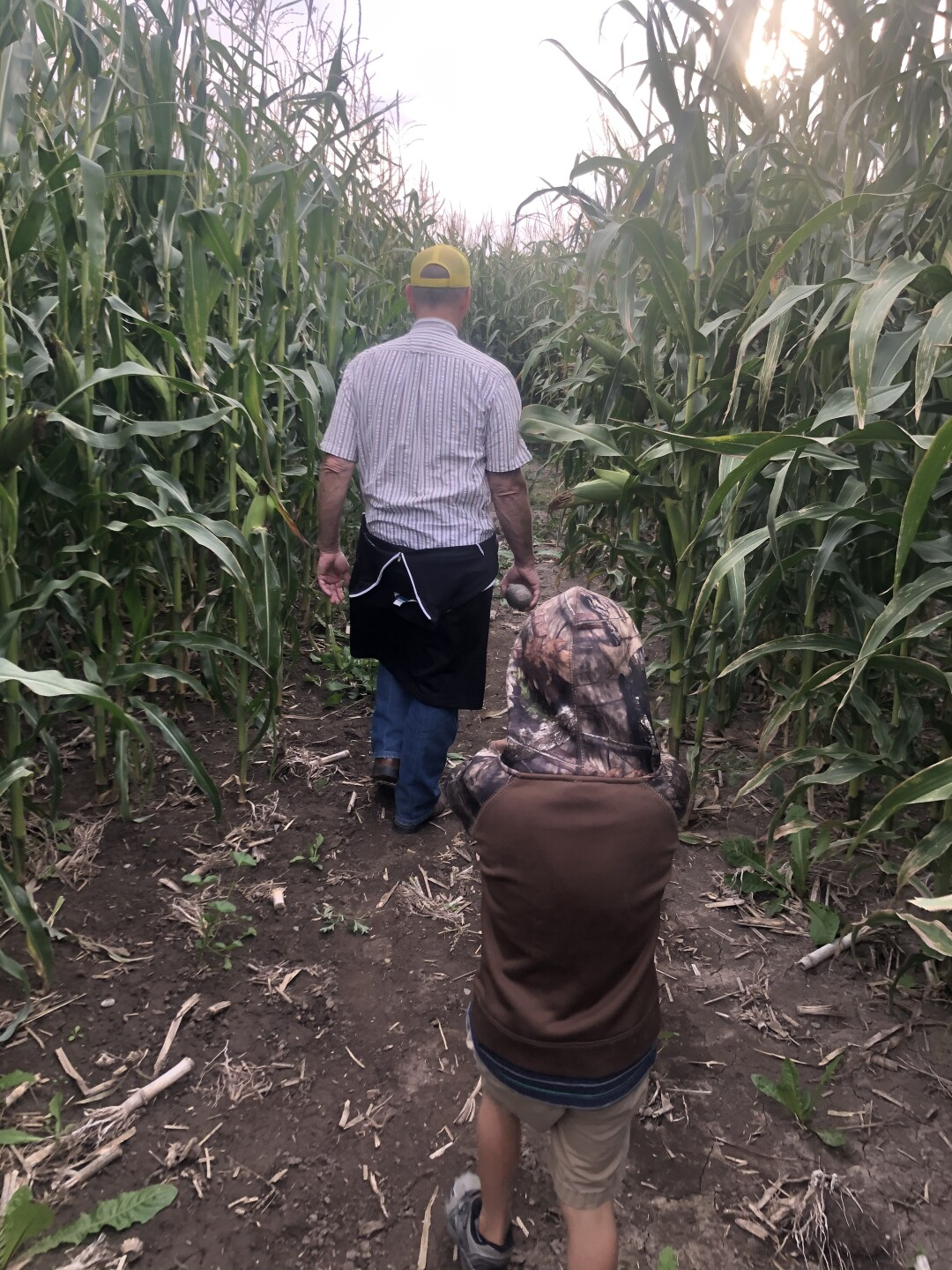Townsend farm offers family fun with pumpkin patch and corn mazes