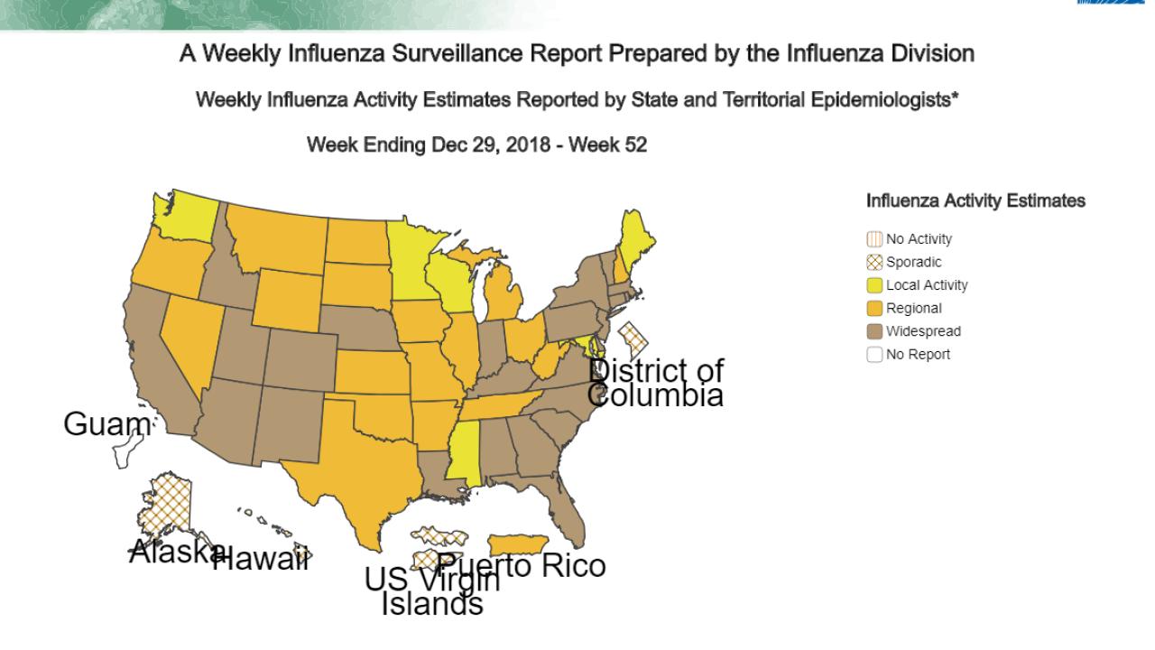 Weekly flu report