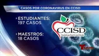 COVID-19 en CCISD 091021