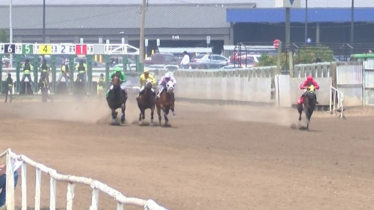 horse races in great falls