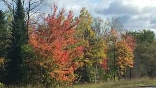 GALLERY: Fall colors across Wisconsin