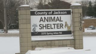 jackson+county+animal+shelter+.PNG