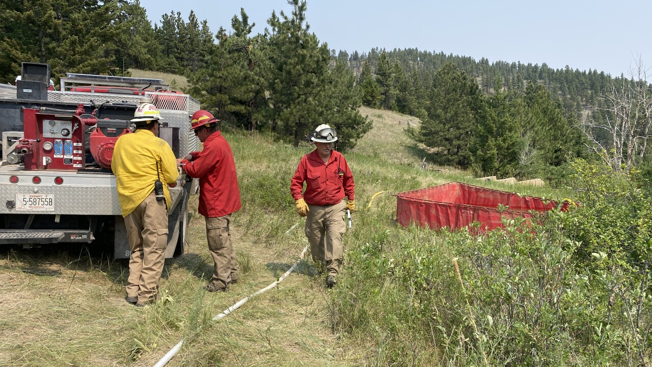Grizzly Gulch Fire