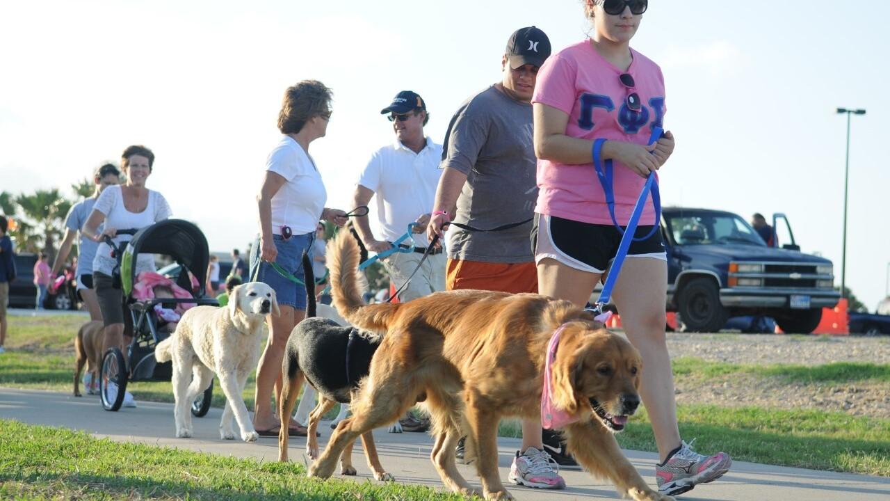 Pup Rally