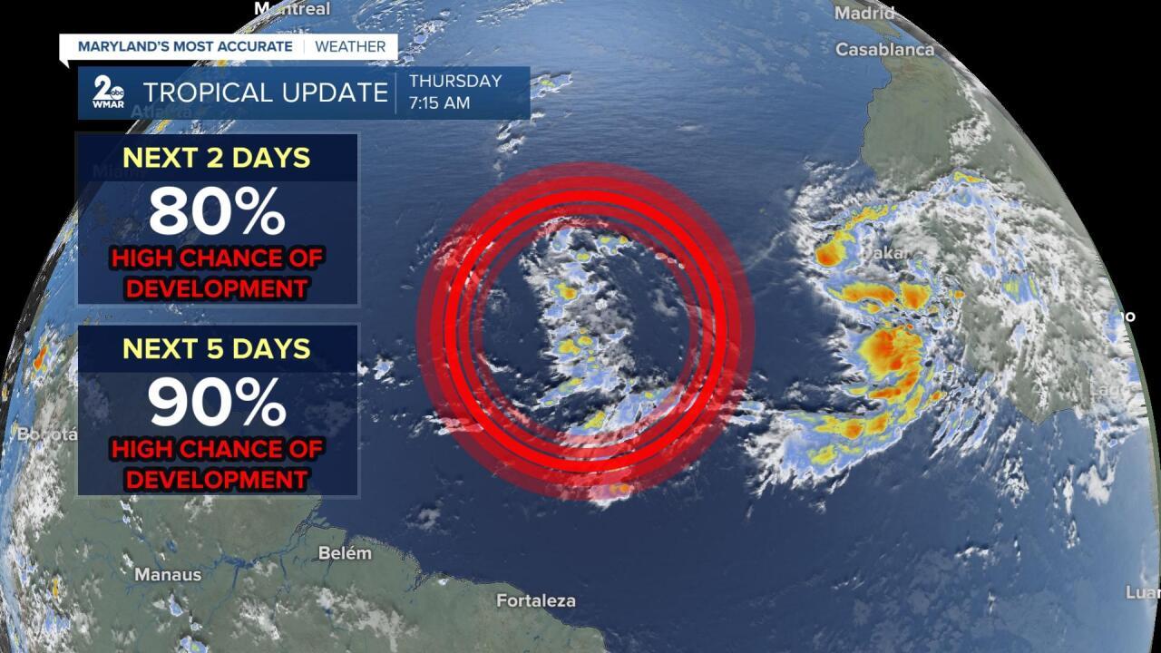 Tropical Update1.jpg