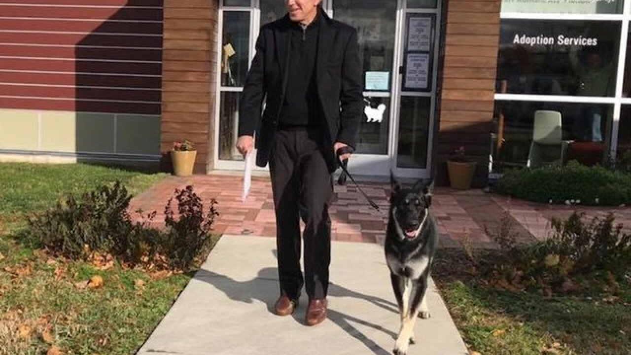 Joe Biden's new friend? A rescue dog named Major