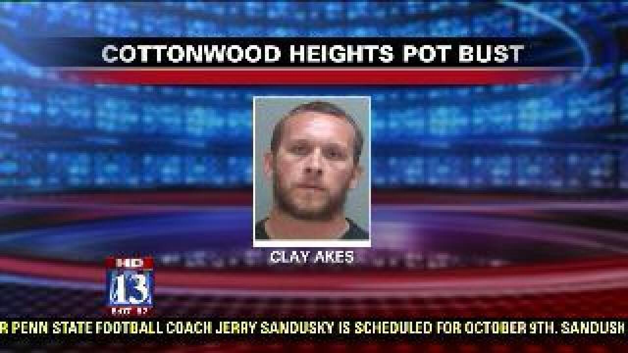 Police arrest man after finding 'sophisticated' marijuana grow