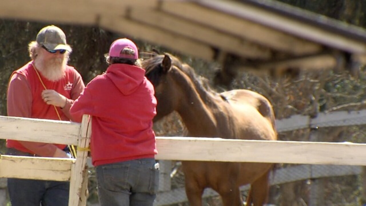 Valley Center rescue under fire for practices
