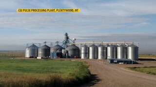 CGI Pulse Processing Plant in Plentywood, MT.jpg