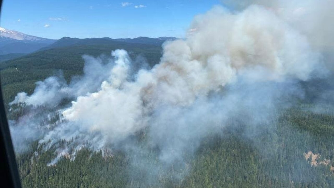 Montana-based pilot dies in helicopter crash while fighting White River Fire in Oregon