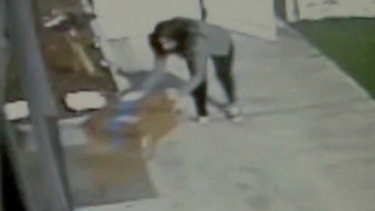Video shows package thief's tactics in El Cajon