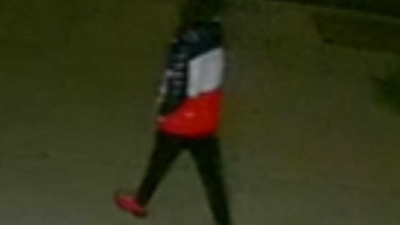 Suspect in Sandy car burglaries