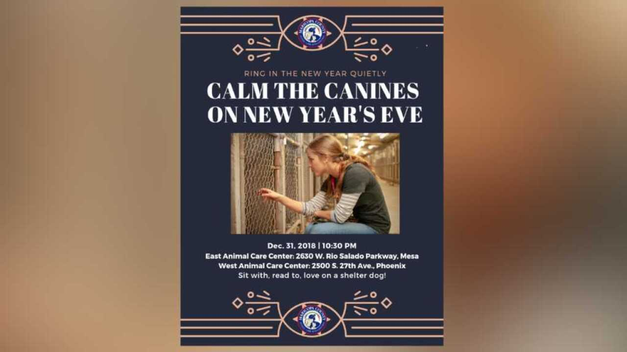 New Year's Eve pet safety tips from Maricopa County Animal Care and Control