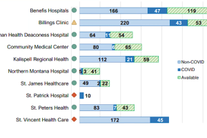 Montana hospitals bed capacity reported Oct. 7