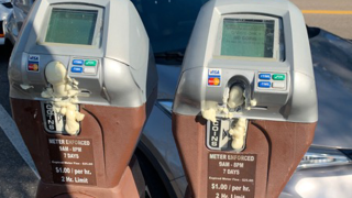 st-pete-parking-meters.png