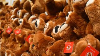 teddy-bears.png