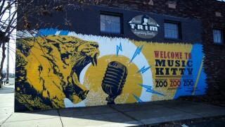 music kitty mural