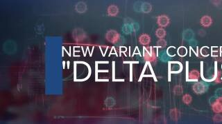 Delta variant has a mutation that's worrying experts: Here's what we know so far