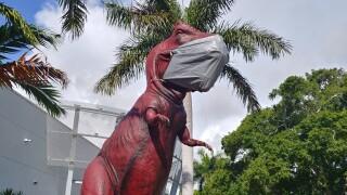 wptv-south-florida-science-center-dino-1.jpg