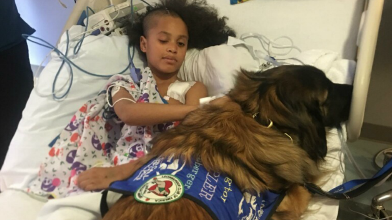 Hopewell boy recovering after headache leads to emergency brain surgery