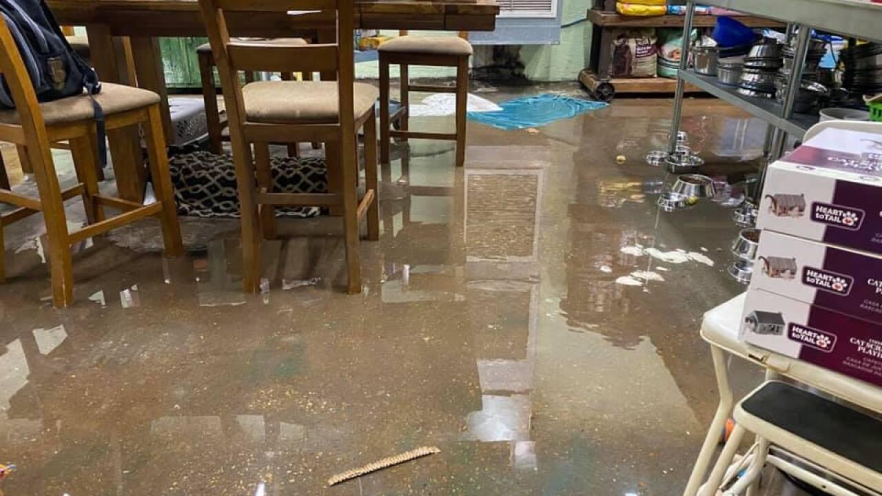 True Rescue flooding