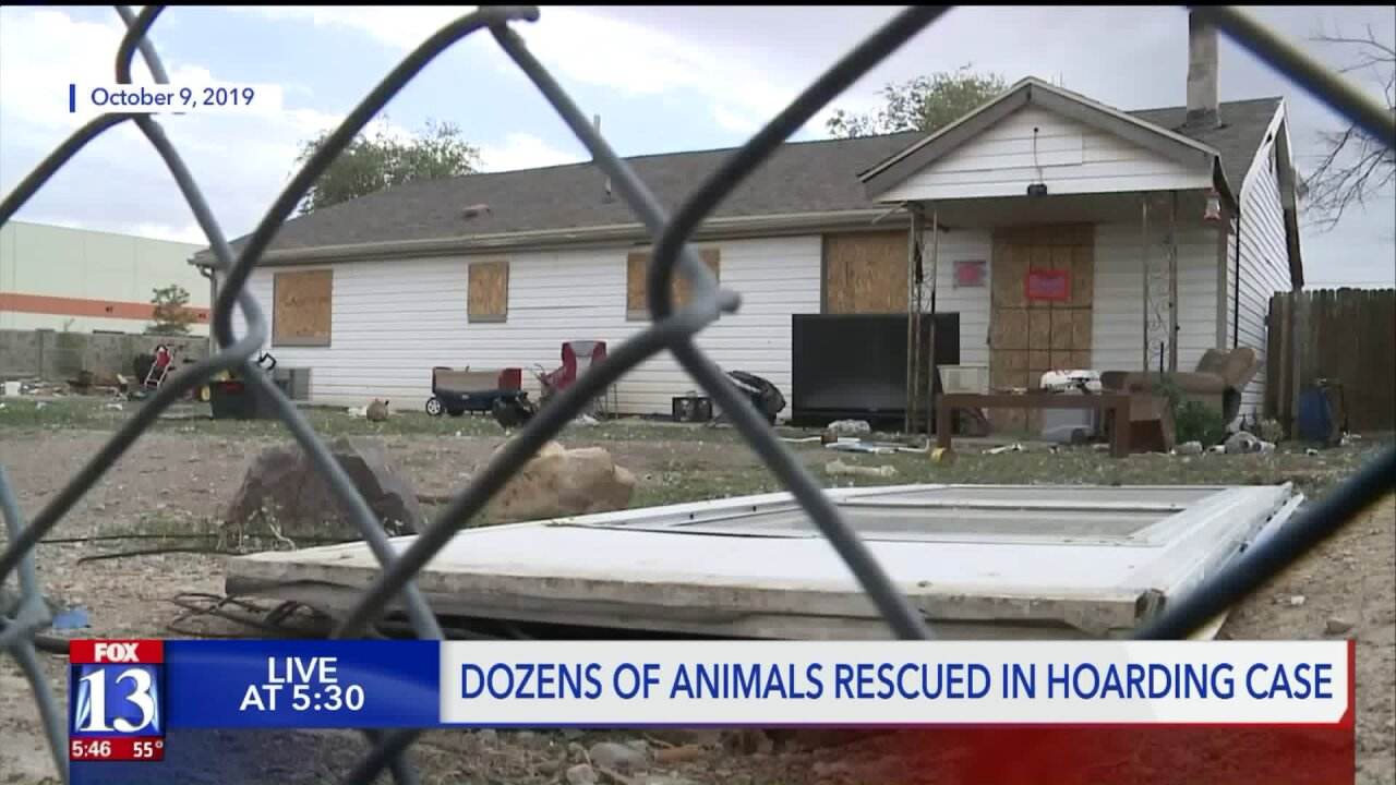 WVC animal shelter rescues 175+ birds from hoarding situation