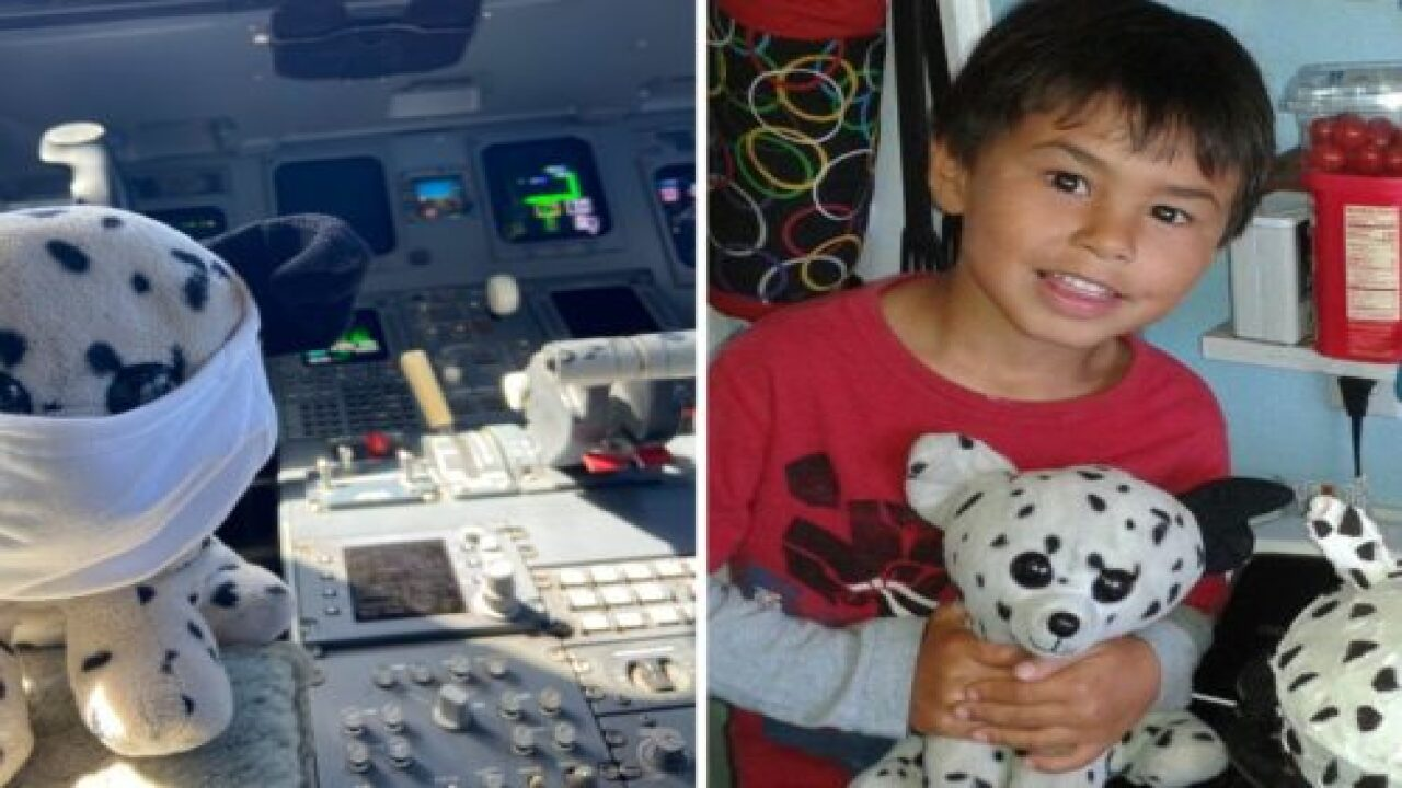 6-year-old Reunites With His Stuffed Dog After Airport's Cute Posts Of The Pup Go Viral