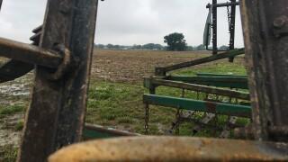 Flooding and Farming.JPG