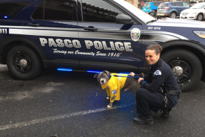 Photos: Terminally ill dog becomes honorary K9 officer