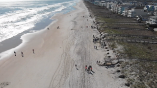 Group of surfers using old Christmas trees to save Carolina coast from erosion