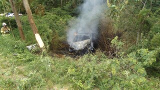 Car catches fire after hitting tree in Claybanks Township