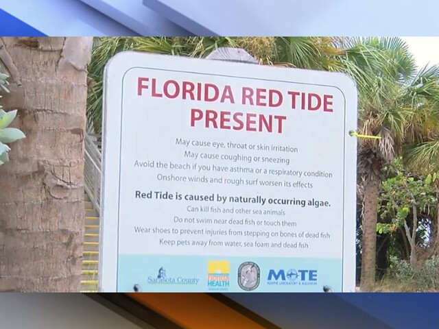 PHOTOS | Red tide impacts Tampa Bay Area