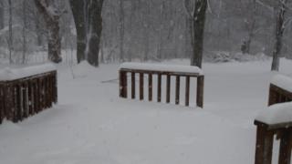 GALLERY: Snow across WNY