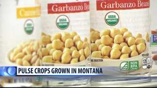 Montana Ag Network: Excitement surrounds growing consumer demand for pulses
