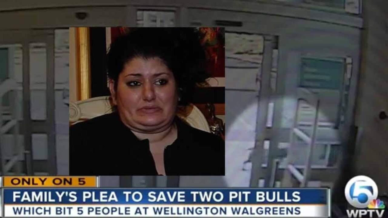VIDEO: Pit bulls attack people at Wellington Walgreens