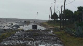 Pictures are from Alligator Point Road in Franklin County