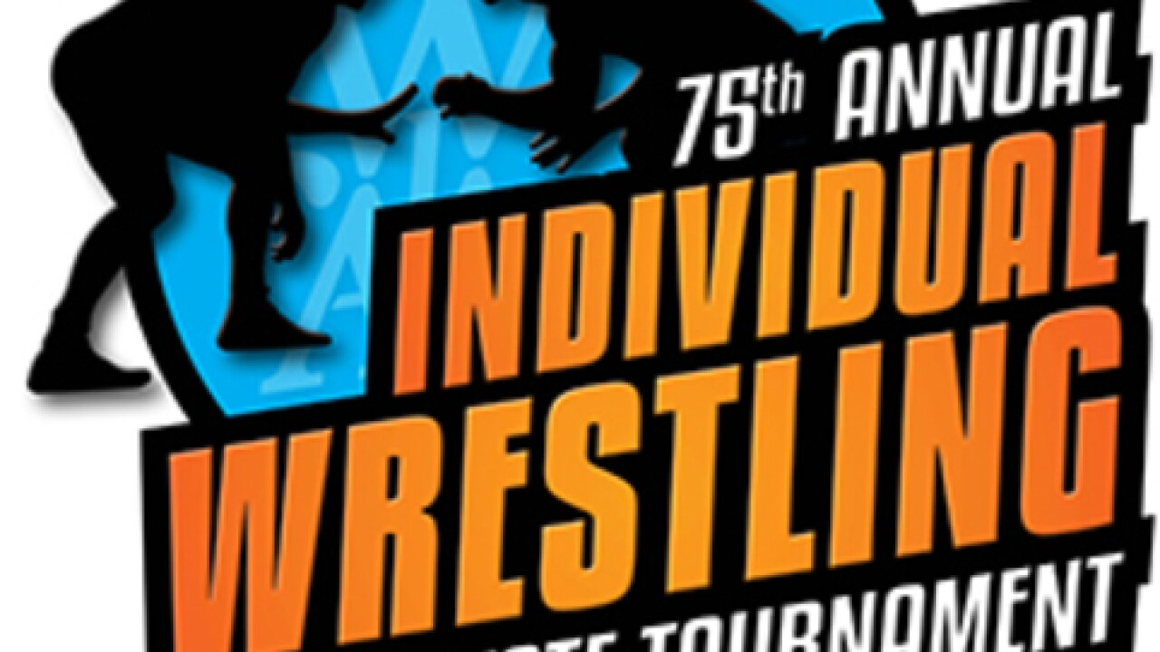 Nine local wrestlers win individual state titles