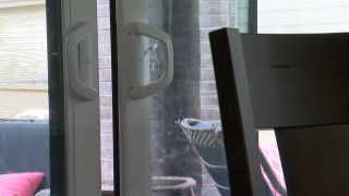 unlocked sliding door.png