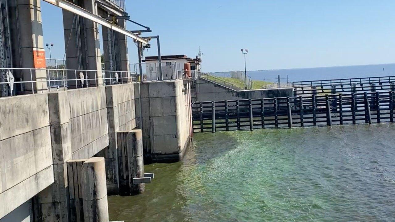 algae-port-mayaca-april13-2.jpg
