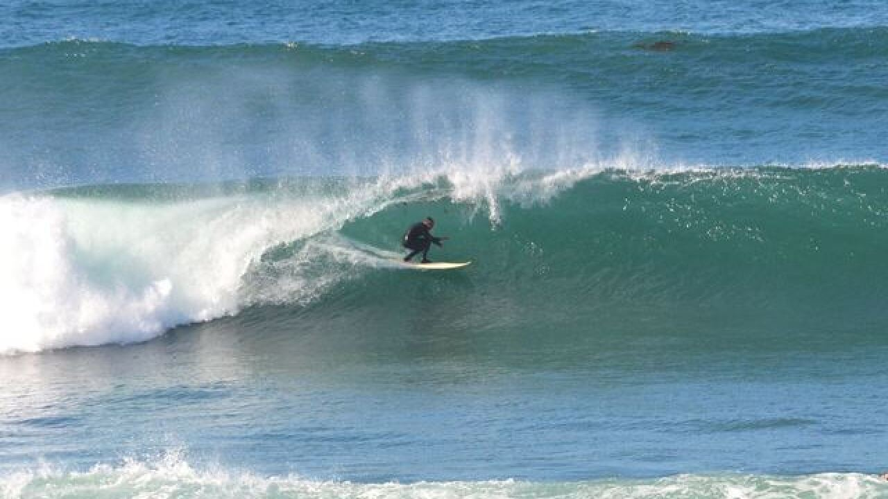 Don't despair surfers, big waves returning soon