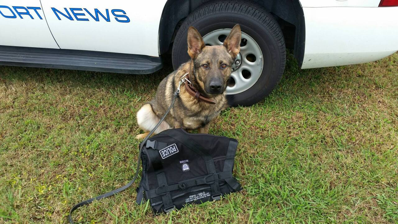 Local family donates vest for Newport News Police K-9