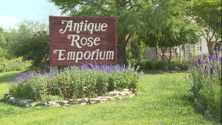 Rose Emporium1.jpg