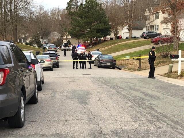 Photos: 79-year-old man shot to death in Chesterfieldneighborhood